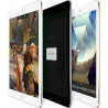 iPad Air 2 (2014) 32Go WiFi Gris Sidéral Reconditionné
